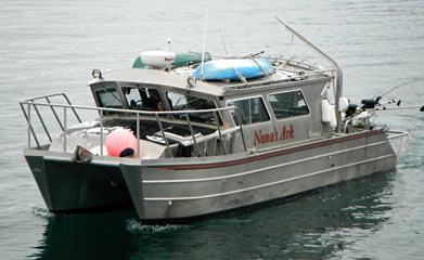 Anchor point alaska halibut fishing charters king salmon for Homer alaska halibut fishing charters